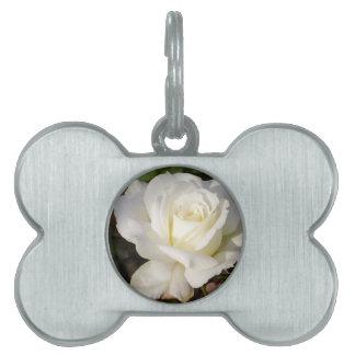 Rosa blanco que casa los regalos nupciales del fie placa de mascota