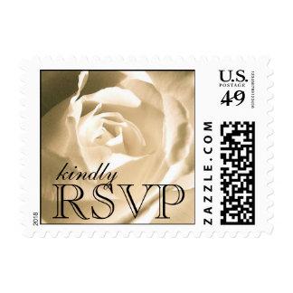 Rosa blanco que casa sellos de RSVP