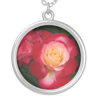 Rosa blanco rojo del collar