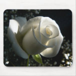 Rosa blanco tapete de raton