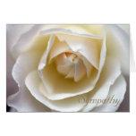 Rosa blanco - tarjeta de condolencia
