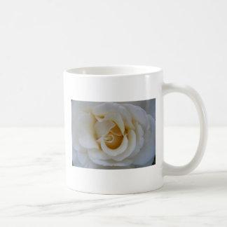 Rosa blanco tazas de café
