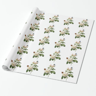 Rosa blanco y mariposas del arte botánico del