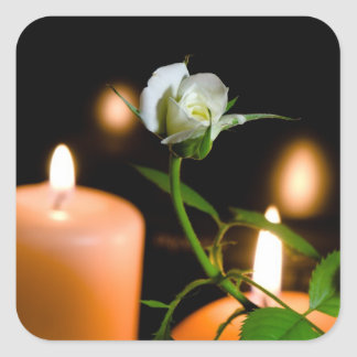 Rosa blanco y vela pegatina cuadrada