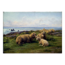 Rosa Bonheur Sheep by the Sea Poster