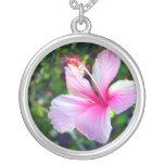 Rosa brillante de la flor del hibisco contra verde colgantes