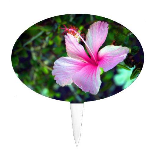 Rosa brillante de la flor del hibisco contra verde decoraciones de tartas