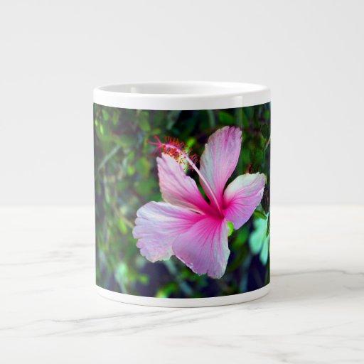Rosa brillante de la flor del hibisco contra verde taza grande