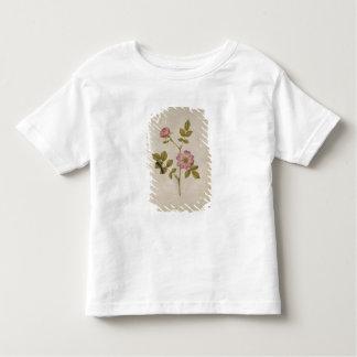 Rosa Canina - Dogrose and Caterpillar (pencil & w/ Toddler T-shirt