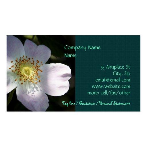 Rosa Canina - plantillas de la tarjeta de visita d