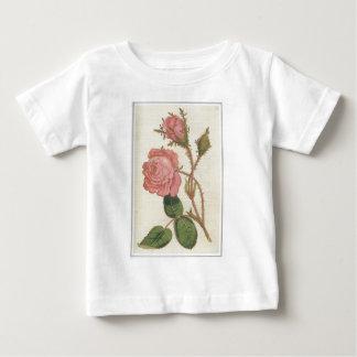 Rosa Cenifolia Muscosa Baby T-Shirt