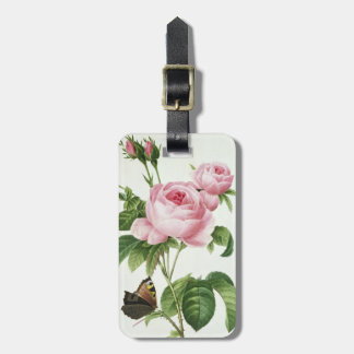 Rosa Centifolia Etiqueta De Equipaje