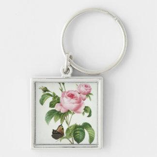 Rosa Centifolia Keychain