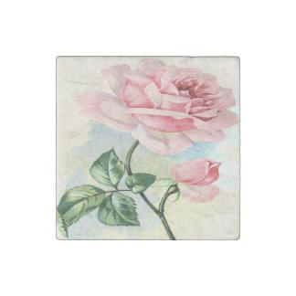 Rosa color de rosa de la belleza, imán de piedra