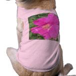 Rosa color de rosa del ciruelo de playa prenda mascota