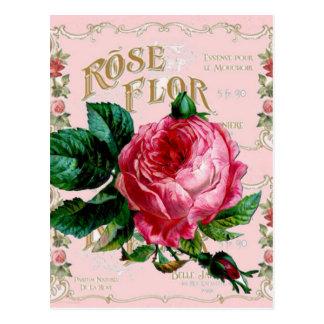 Rosa color de rosa inglés del vintage de postal