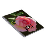Rosa color de rosa inglés libros de apuntes