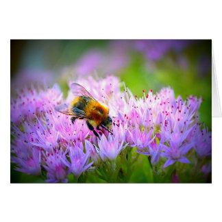 rosa de la abeja tarjeta pequeña