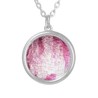 rosa de la estructura joyerías