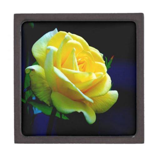 rosa de la flor abierto al amor caja de recuerdo de calidad