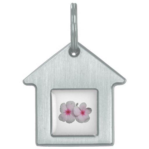 Rosa de la flor de molinillo de viento con las mar placas mascota