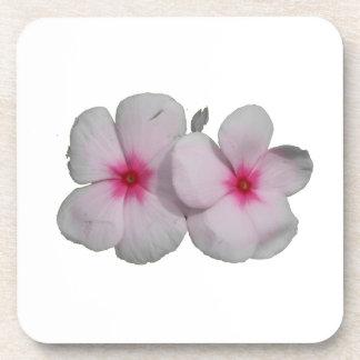 Rosa de la flor de molinillo de viento con las mar posavasos de bebida