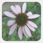 Rosa de la flor del cono pegatina cuadradas personalizadas