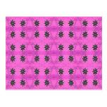 rosa de los starflowers tarjeta postal
