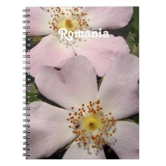 Rosa de perro spiral notebook