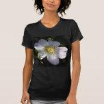 Rosa de perro tímido Dappled en luz del sol Camiseta