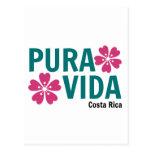 Rosa de Pura Vida y diseño florales del verde Postal
