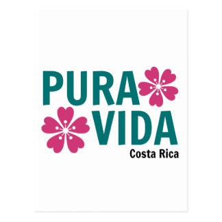 Rosa de Pura Vida y diseño florales del verde Tarjetas Postales