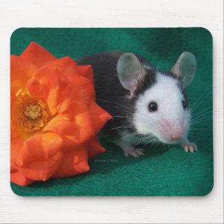 Rosa de té blanco negro del ratón y del naranja tapete de raton