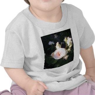 Rosa de té híbrido de Vivaldi Camisetas