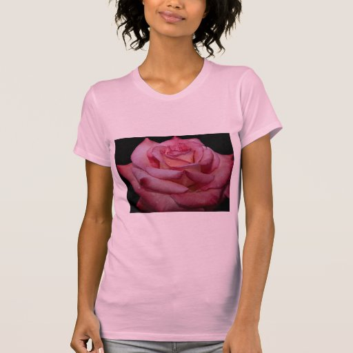 Rosa de té híbrido hermoso 'Elegance escarpado Camiseta
