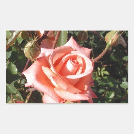 Rosa de té híbrido pegatina rectangular