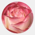 Rosa de té híbrido pegatina redonda