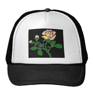 Rosa de té negro gorras