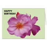 Rosa de té - tarjeta de cumpleaños