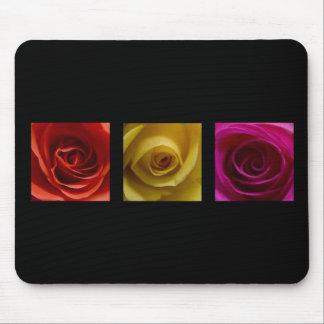 Rosa del amarillo anaranjado de los rosas del alfombrillas de raton