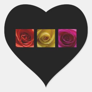 Rosa del amarillo anaranjado de los rosas del pegatina en forma de corazón