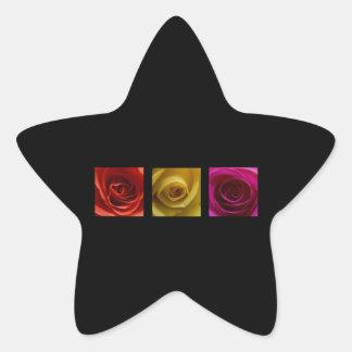 Rosa del amarillo anaranjado de los rosas del pegatina en forma de estrella