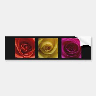 Rosa del amarillo anaranjado de los rosas del pegatina para auto