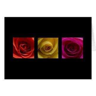 Rosa del amarillo anaranjado de los rosas del tarjeta de felicitación