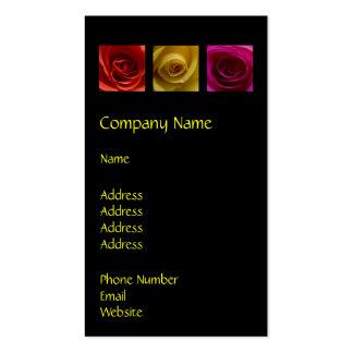 Rosa del amarillo anaranjado de los rosas del tarjetas de visita
