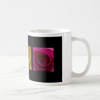 Rosa del amarillo anaranjado de los rosas del taza
