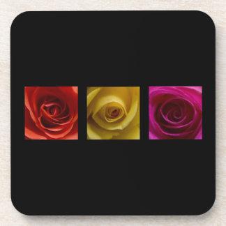Rosa del amarillo anaranjado de los rosas del tríp posavasos