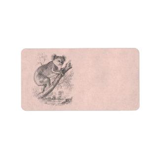 Rosa del ejemplo del oso de koala de los 1800s del etiqueta de dirección