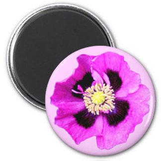 Rosa del imán del refrigerador de la amapola orien