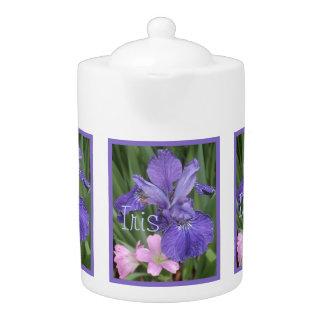Rosa del iris del azul francés